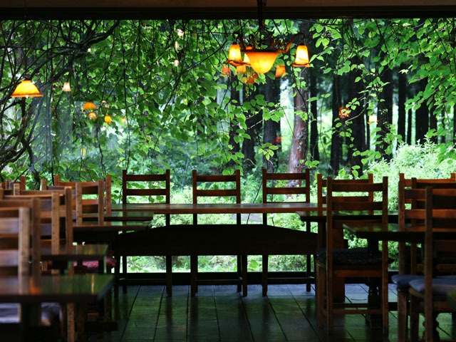 空の庭 自然レストラン